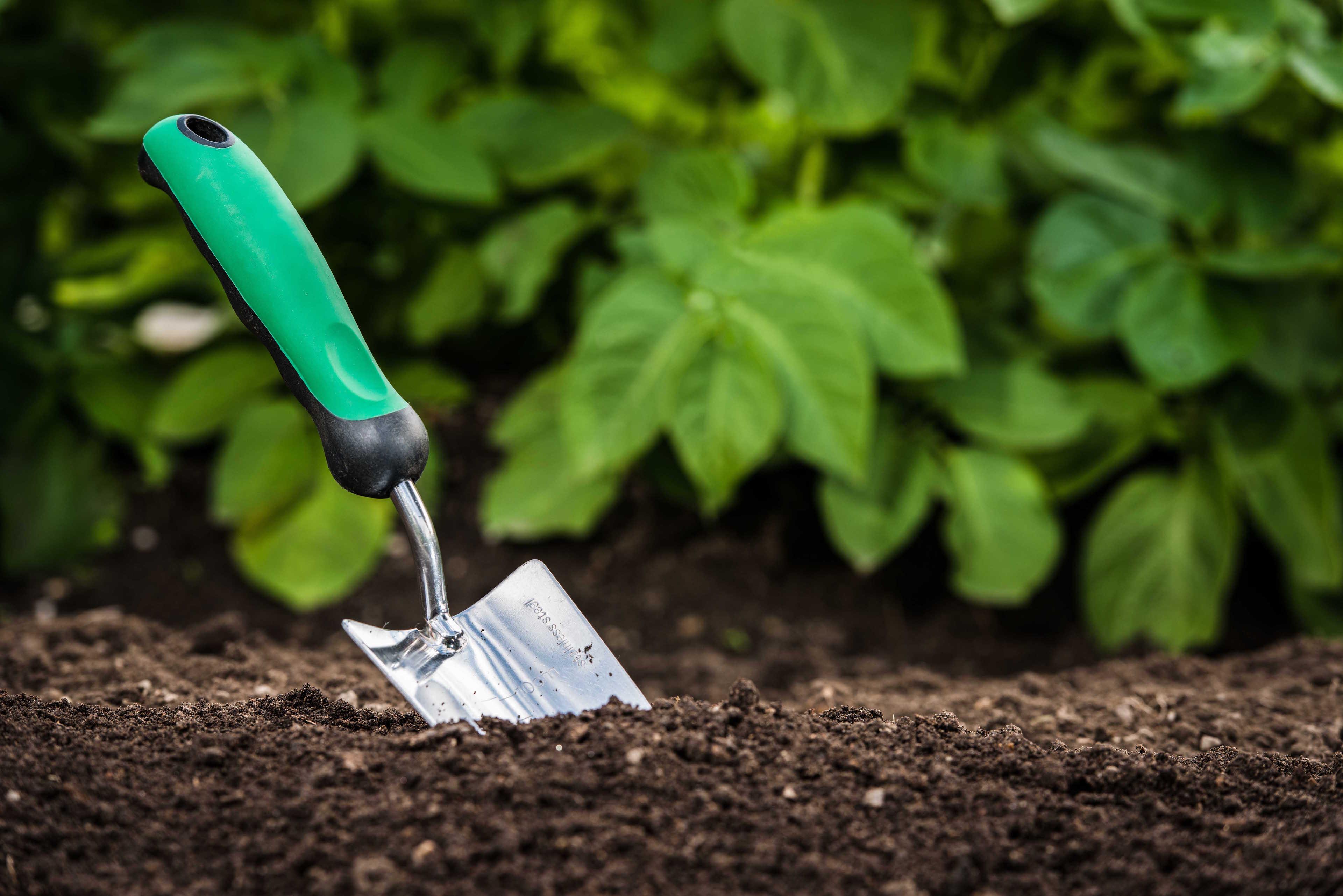 Pelle de jardinage