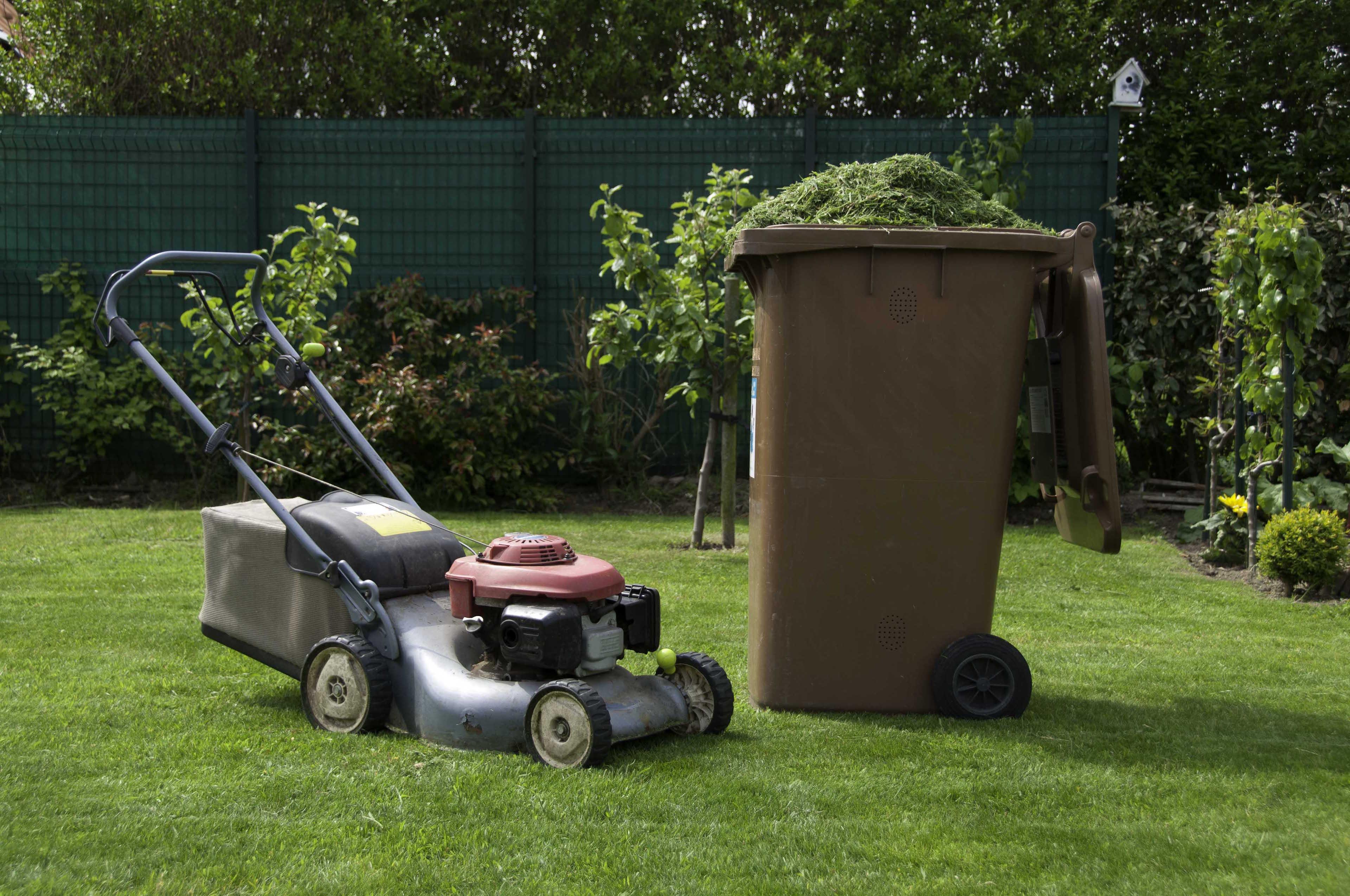 lawnmower-3840x2550.jpg