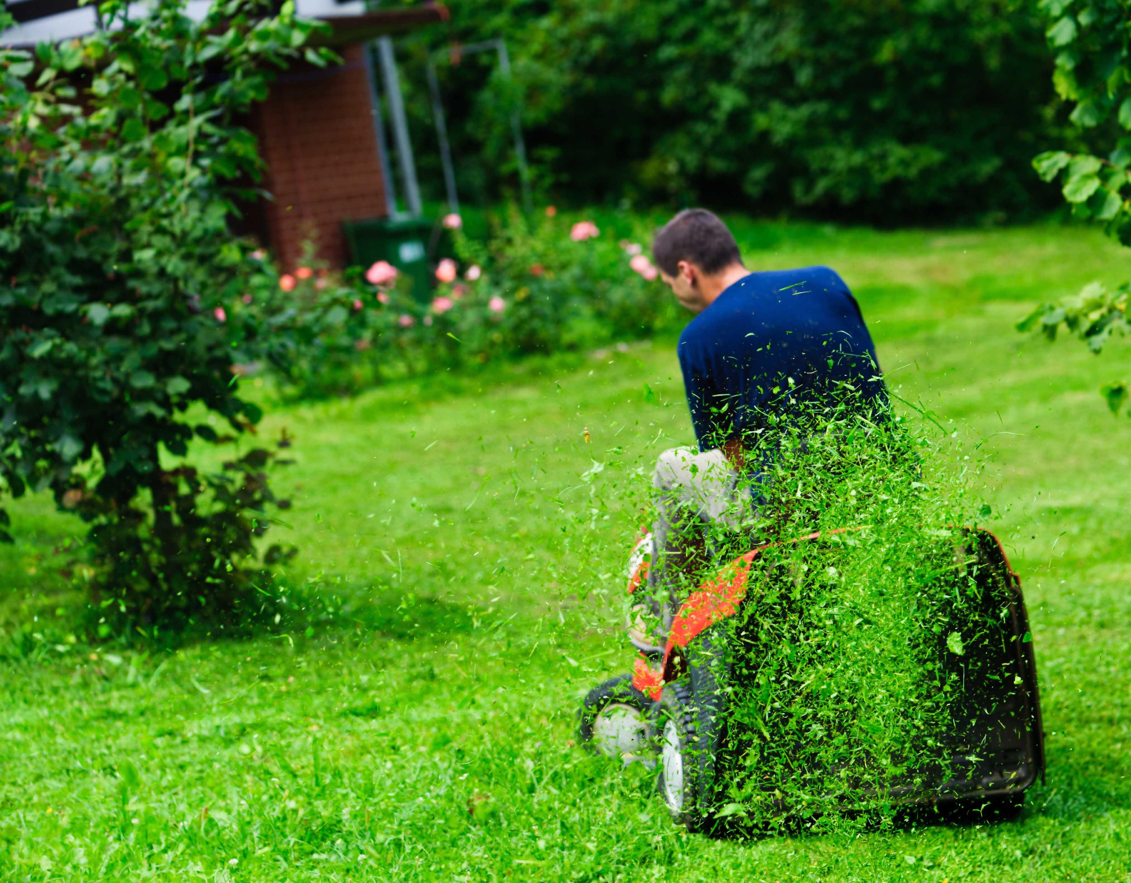 Rasenmähen Aufsitzrasenmäher